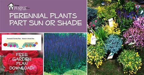 perennial herb garden layout perennial garden plans for partial sun or shade pretty