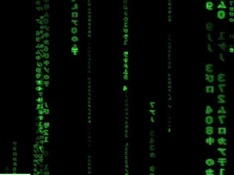 wallpaper matrix mac wallpaper animado de matrix mac taringa