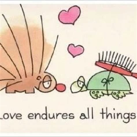 images of love endures all things love endures all things animals and plants pinterest