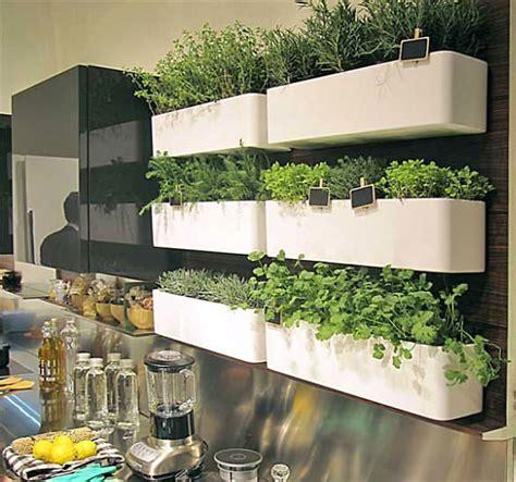 brilliant diy indoor herb garden ideas  garden glove