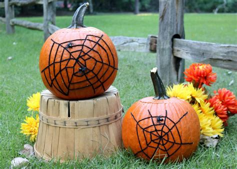 How To Decorate A Pumpkin by Decoration Spider Web Pumpkin How Tos Diy