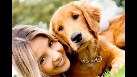imagenes otoñales con animales dos especies una amistad sin limite amistad entre perros