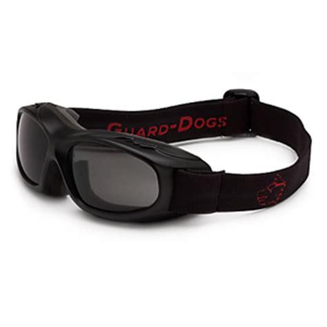 guard dogs aggressive eyewear