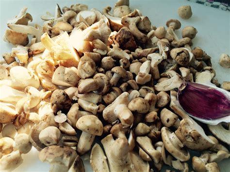 come cucinare i funghi prugnoli tagliatelle ai prugnoli due ingredienti separati alla