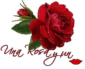 imagenes de flores que brillan rosas rojas con movimiento y brillo para google plus