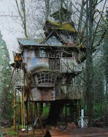 Tree Homes treehouse taster 3 wildly different types of tree houses urbanist