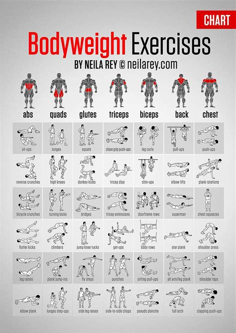darebee on quot bodyweight exercises chart high res