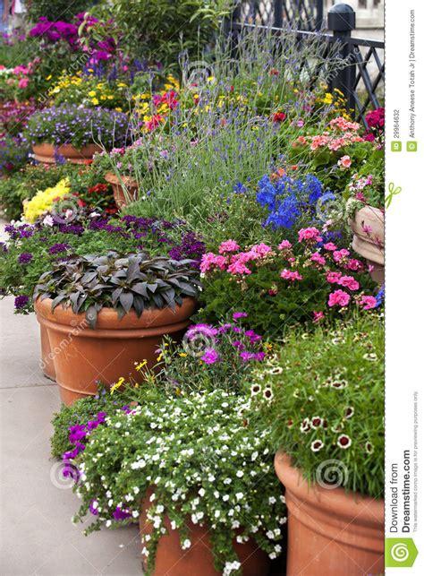 flower pot gardening flower pot gardening stock photography image 29964632