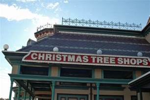 tree shop tree shops new locations and tips