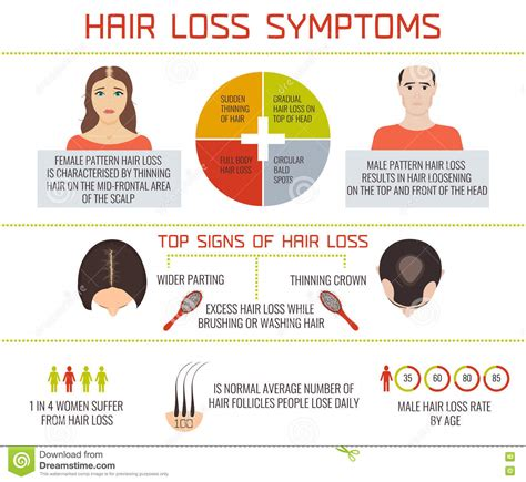 reasons for male pattern hair loss hair loss symptoms infographics stock vector image 71756051