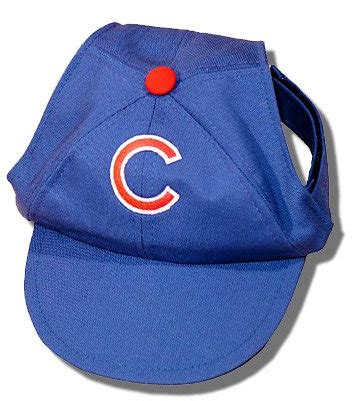 dog names for chicago cubs fans so your dog is a chicago sports fan rover com