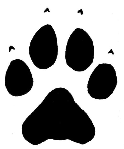 paw drawing how to draw wolf paw print