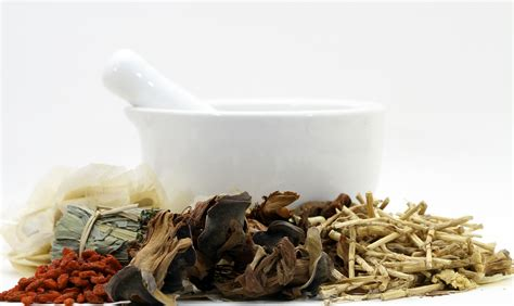 traditional medicine traditional medicine advantages and disadvantages gg