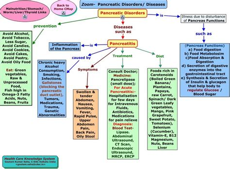 nursing concept map the world s catalog of ideas