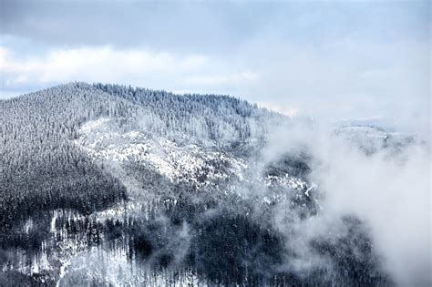 5 Bedroom Cabins In Gatlinburg Tn is a winter vacation in the smoky mountains right for you