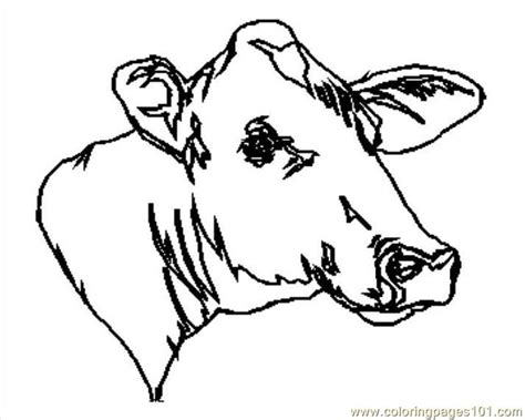 coloring pages cow face cow011 coloring page free cow coloring pages