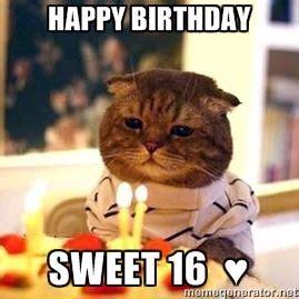 Happy Birthday Sandra Meme
