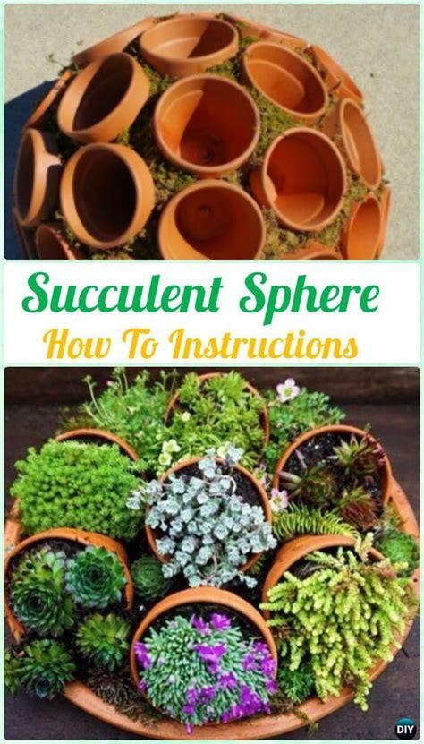 succulent turtle outdoor ideas pinterest diy indoor outdoor succulent garden ideas instructions