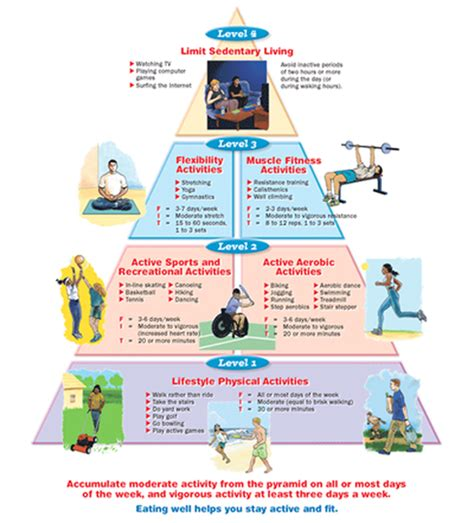Physical Health Worksheets by Physical Activity Pyramid Activities