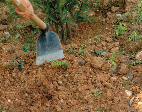 zappa giardino attrezzi a manico lungo da giardino fai da te in giardino