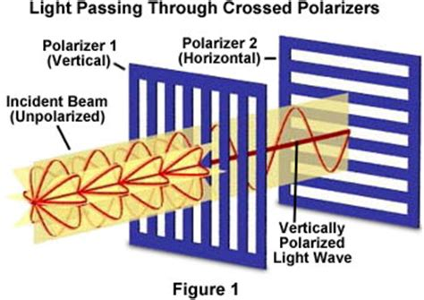 Polarization Of Light by Molecular Expressions Science Optics And You Light And