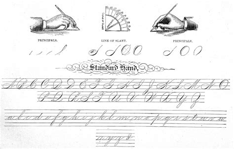 Spencerian Handwriting Worksheets by Trying To Learn Spencerian Business Writing Calligraphy