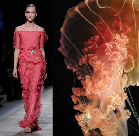 Fascinating Look In Sea Inspired How To Do Valentino S See Inspired Collection