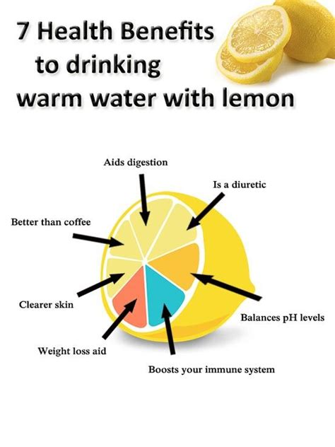 How Much Lemon Water Should I Drink To Detox by 7 Health Benefits To Warm Lemon Water Health