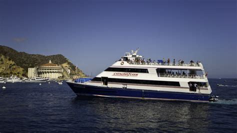 catalina island boat tour ferry to catalina island catalina tours