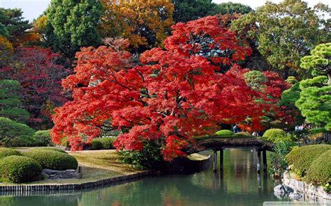 imagenes paisajes japoneses hd lugares bellos de jap 243 n te dejamos los mejores paisajes de