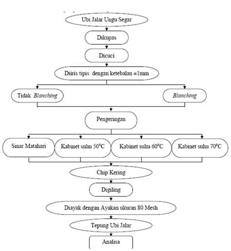 prosedur membuat na pengolahan tepung telo ungu dan analisanya