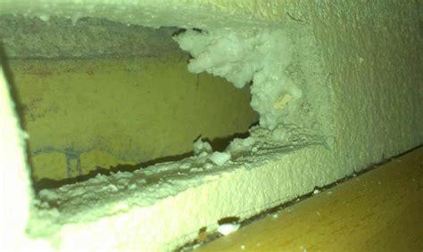 Wo Ist Asbest Drin by Bau De Forum Modernisierung Sanierung Bausch 228 Den