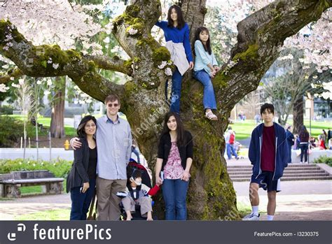 cherry tree family image of big family of seven by large cherry tree in bloom