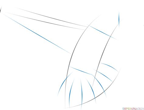 how to draw a hummingbird flying step by step drawing