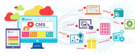 design management australia wordpress developer perth australia sushi digital