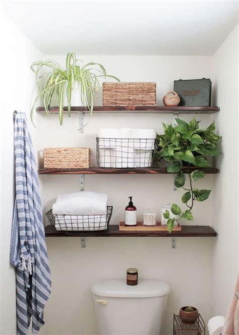 Bathroom Plants Low Light by 25 Best Ideas About Bathroom Plants On Plants