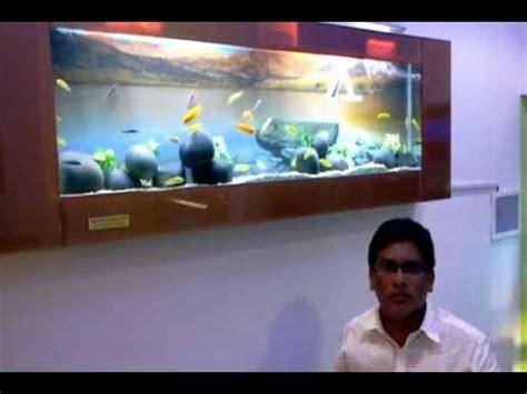 aquarium design chennai chicled aquarium slim plasma model design jabbar aquarium