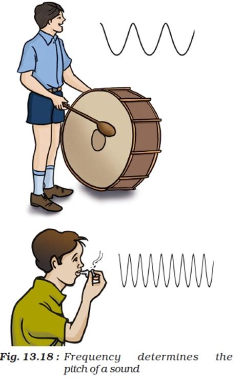high pitch whistle sound ncert class viii science chapter 13 sound aglasem schools