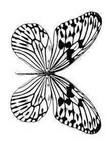 butterfly pictures to color free printable butterfly coloring pages for