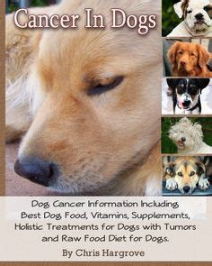 the cancer cure diet for dogs using the ketogenic diet to prevent treat and cure cancer in your furriest family member books cancer diet for dogs on cancer for dogs and diet