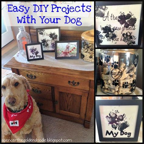 Best Easy Cheap Detox For Dogs by Spencer The Goldendoodle Project With Your Easy