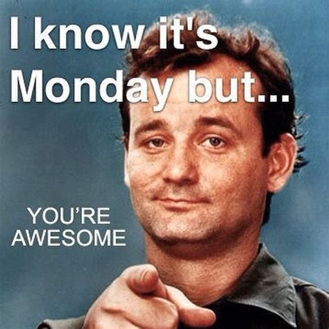 Awesome Meme Quotes - 1 year of single i know it s monday but you re awesome