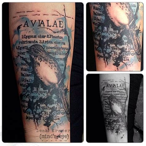 watercolor tattoos pennsylvania 25 best ideas about watercolor bird tattoos on