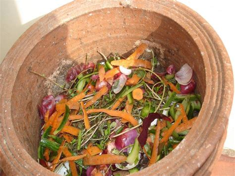 Composting Kitchen Waste At Home by Make Compost Not Waste Dhanyam