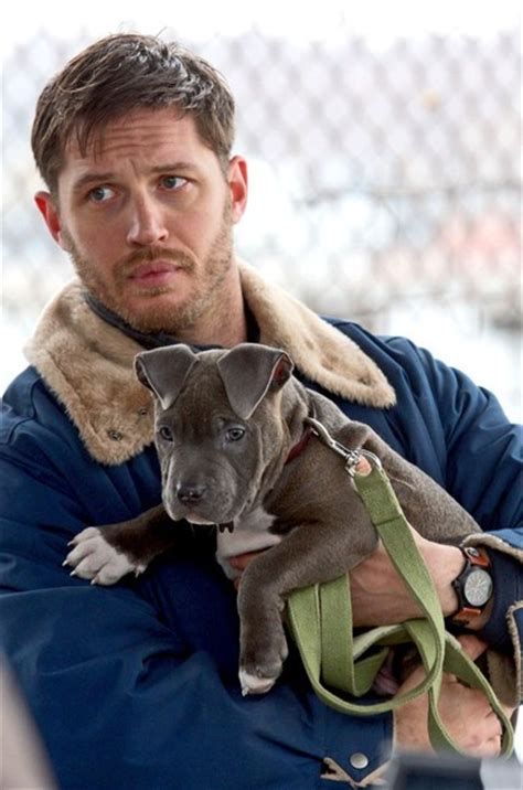 tom hardy puppy tom hardy has puppy zimbio