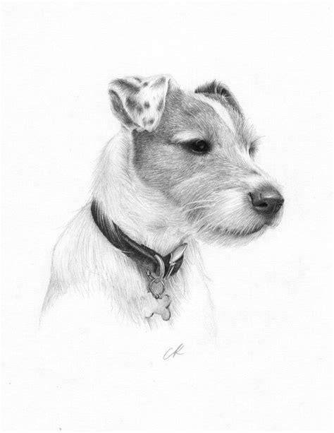 Billy by kris-knave.deviantart.com on @deviantART | Animal