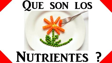 que son las imagenes mitologicas wikipedia que son los nutrientes salud y nutricion youtube