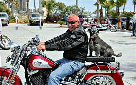 jacksons boat dog show 2018 thunder beach bikers rally rolls into pcb every spring