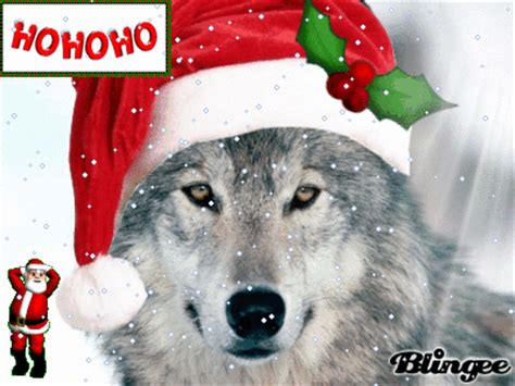 christmas wolf picture 103361646 blingee com