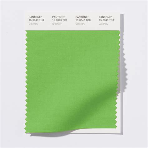 color of the year 2017 fashion pantone color of the year 2017 pantone 15 0343 greenery